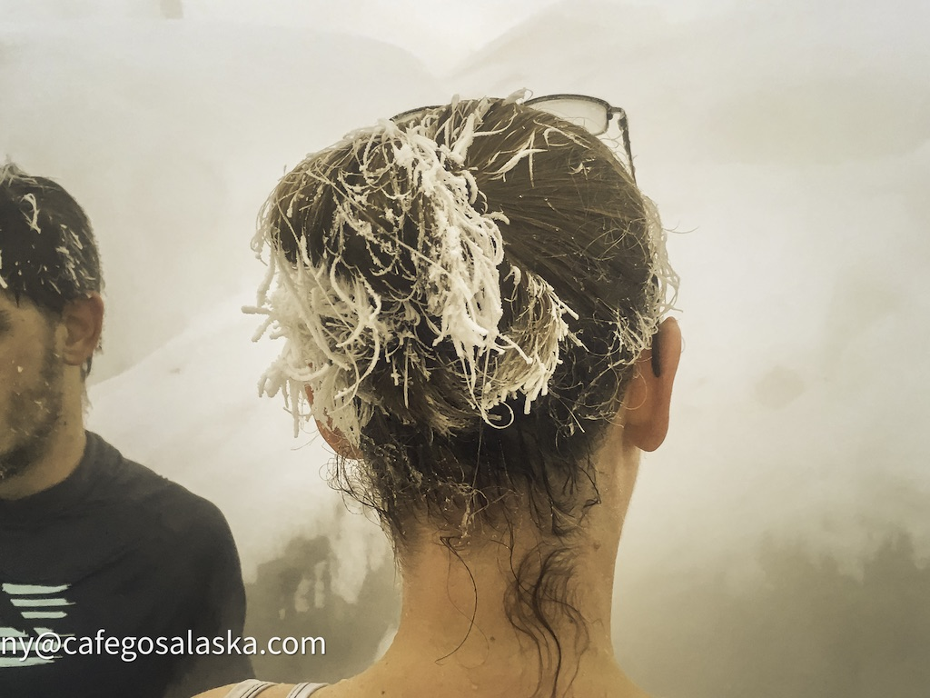 Frosty Hair_1K